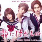 花にけだもの ドラマ・実写 1話~最終回 無料視聴【2017】