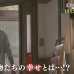 僕とシッポと神楽坂 第2話 動画フル視聴見逃し配信はこちら