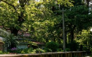 家売るオンナの逆襲 画像3