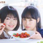 新米姉妹のふたりごはん1話~最終回ドラマ動画フル視聴見逃し配信はこちら!