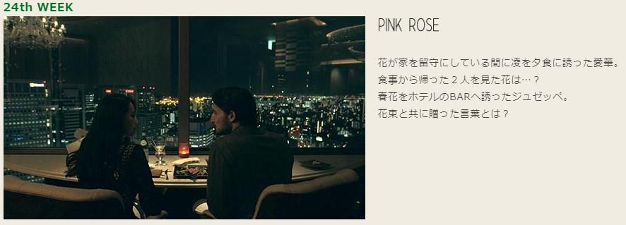 テラスハウス東京24話