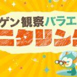 ニンゲン観察モニタリング2020過去~最新放送動画無料見逃し配信はこちら!