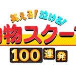 笑える泣ける動物スクープ100連発2020動画無料視聴見逃し配信はこちら!