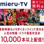 特別番組等(VOD・動画配信サービスで配信されていない番組の訴求)の書き方【2021年版】